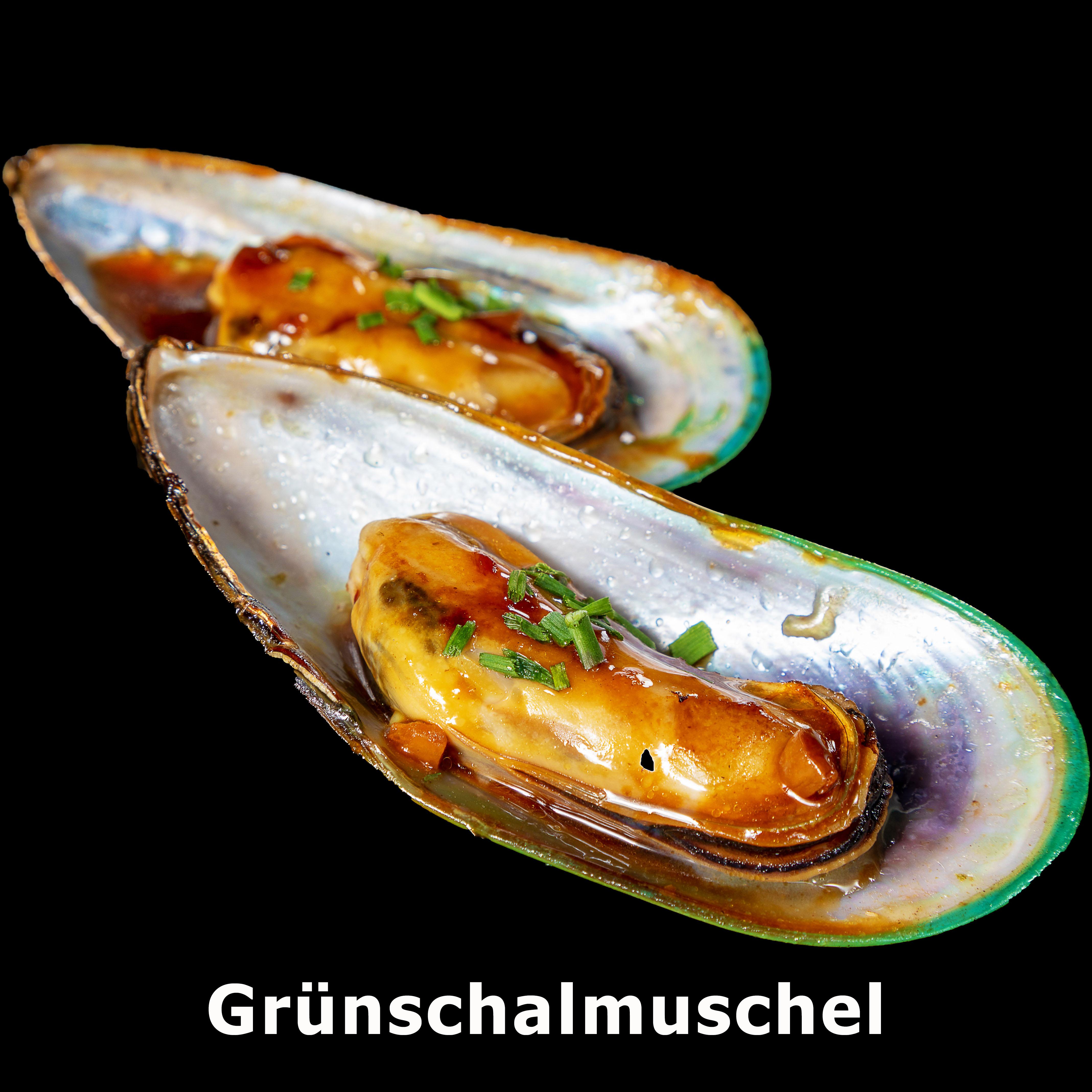 132. Grünschalmuschel