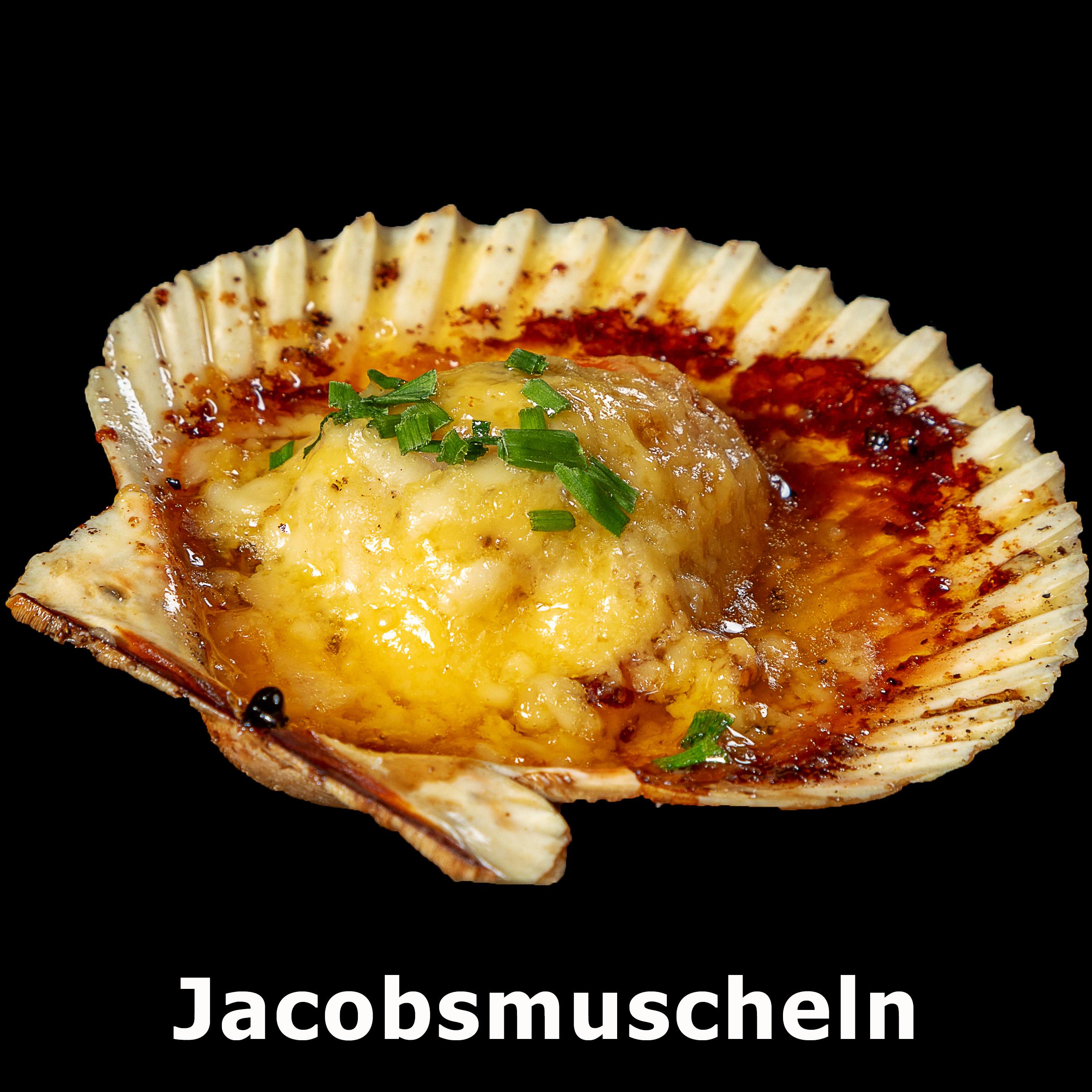 138. Jacobsmuscheln